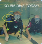 Scuba Dive, Today!!!